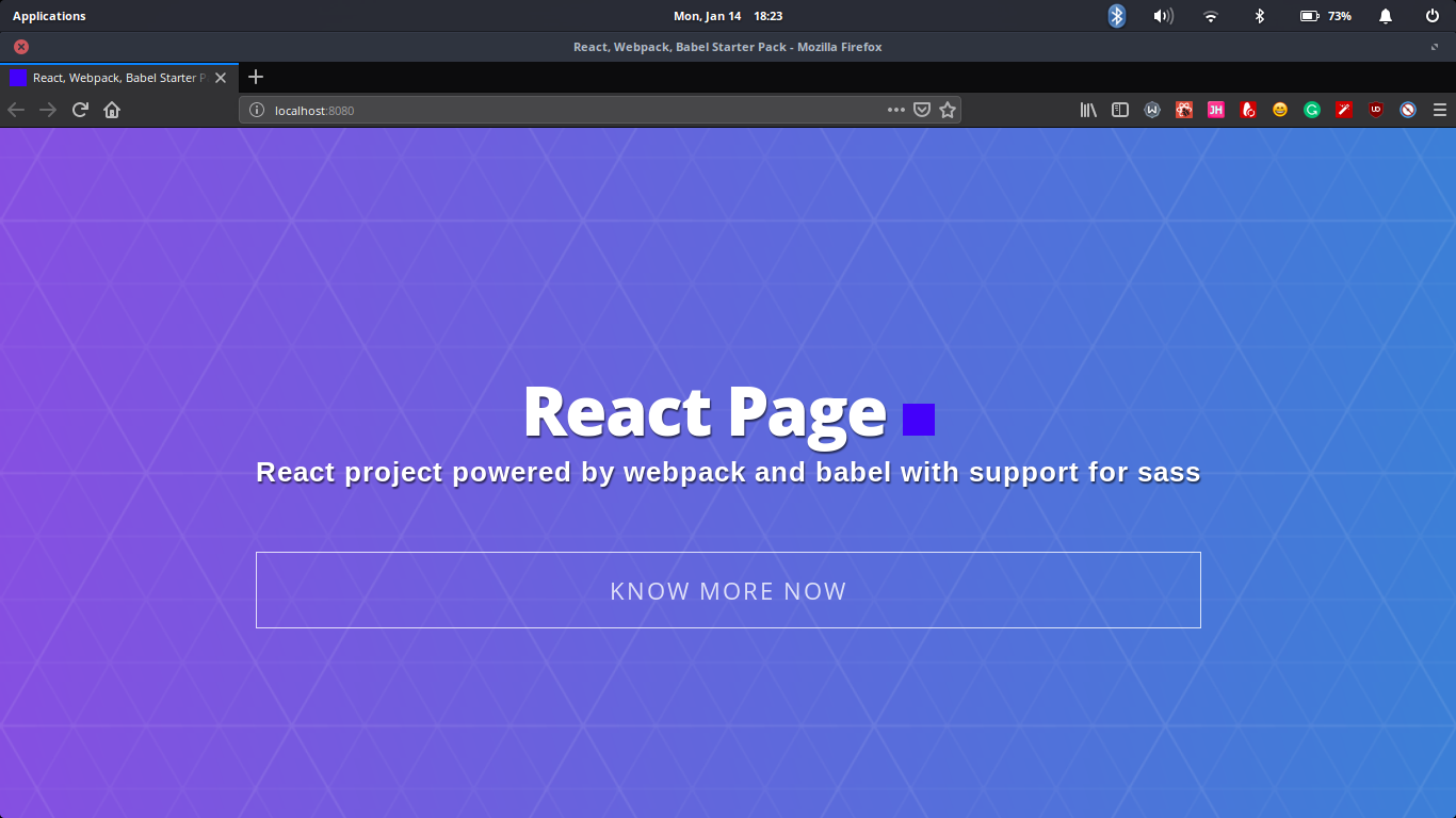 React project in the browser