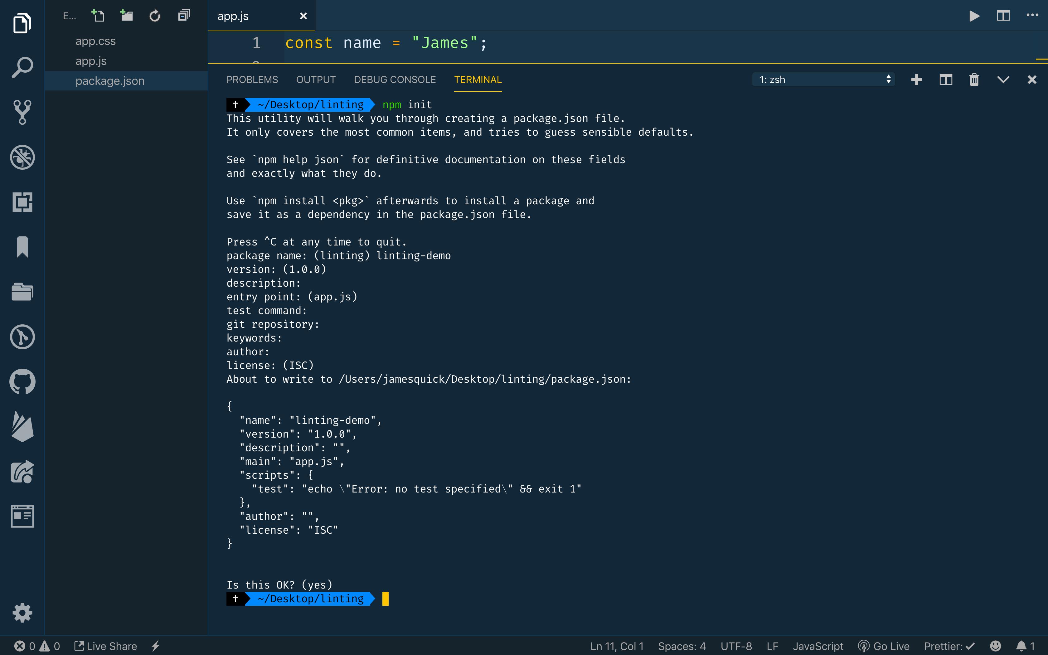 Run npm init