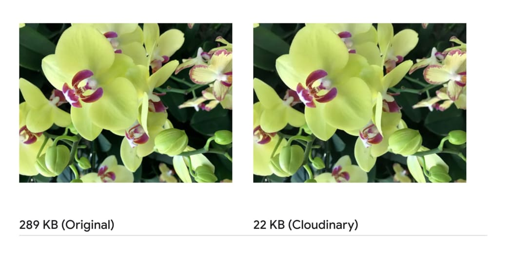 Optimize & Serve Next-Gen Images Just by Changing the Image's URL with Cloudinary's URL API